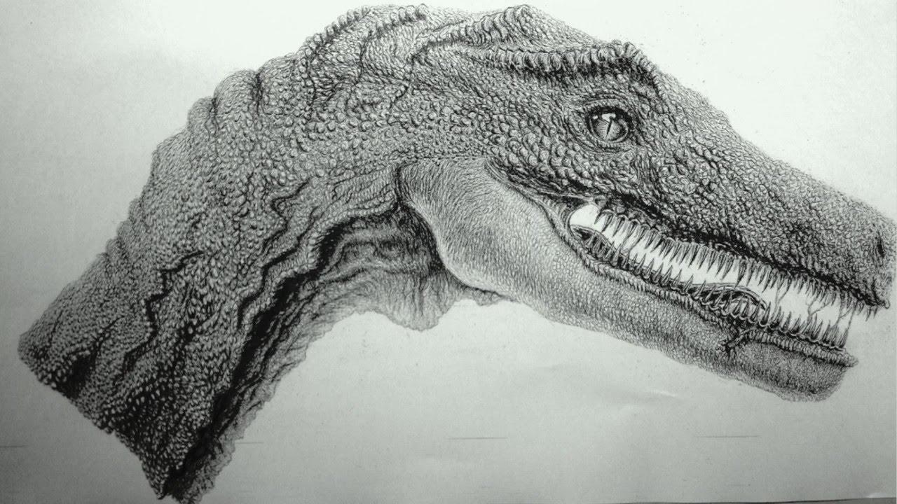 シャーペンで描いた恐竜の絵 Youtube