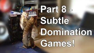 Bengal cat behaviour - Subtle changes Part 8 thumbnail