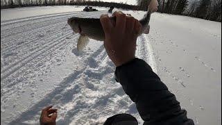 Рыбалка.Зима в АПРЕЛЕВсе в ШОКЕ
