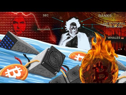 What happened to cryptocurrency market 29 nov