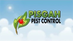 Mosquito Control Brevard, Cashiers, Hendersonville, Asheville NC