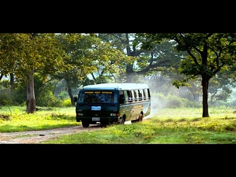 Bandipur Forest Safari - A video tour of Bandipur National Park