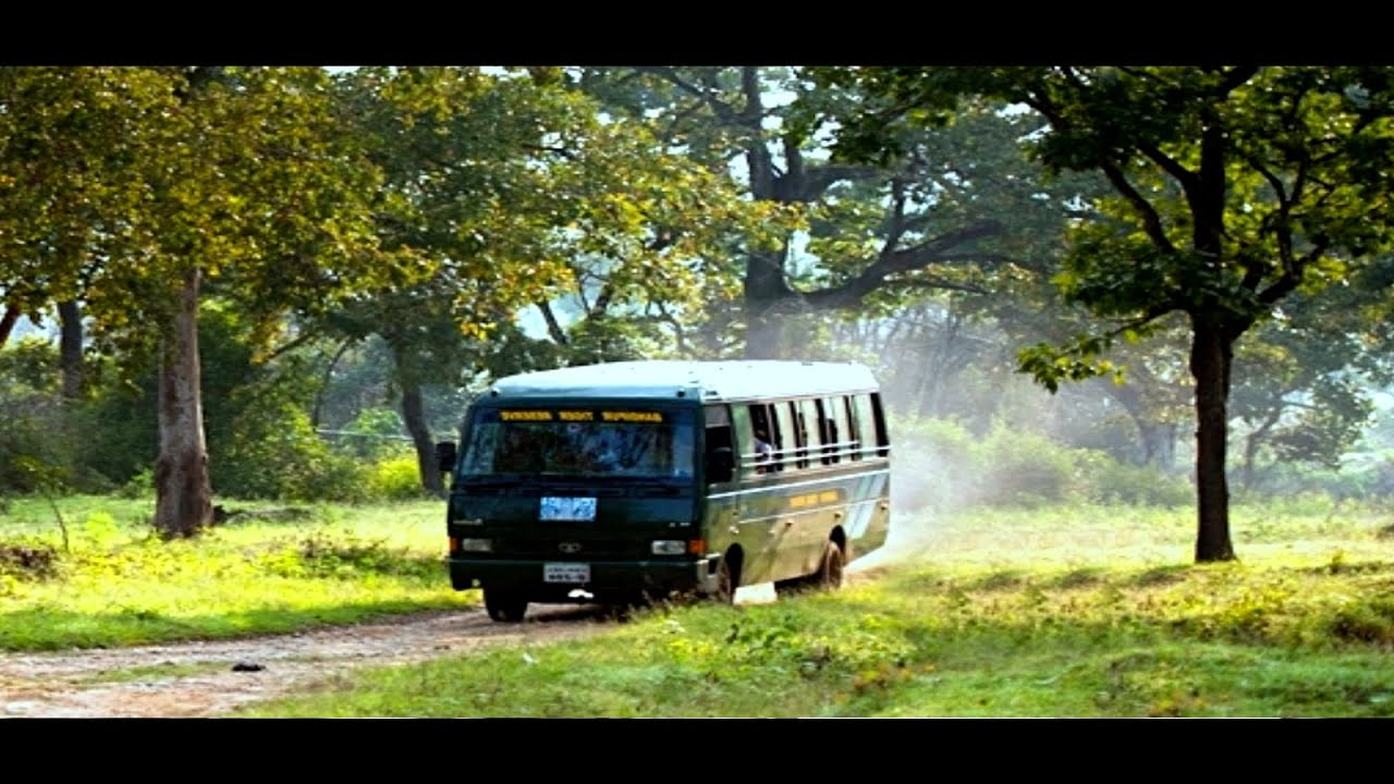 Tiger Live Wallpaper Hd Bandipur Forest Safari A Video Tour Of Bandipur National