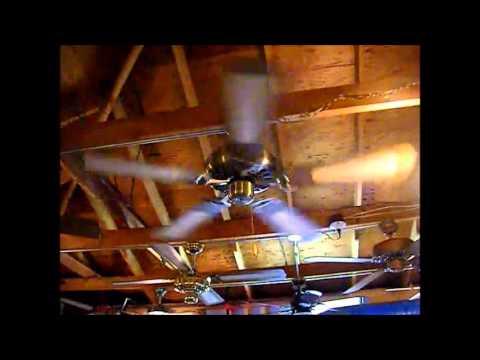 Ceiling Fan Harlem Shake