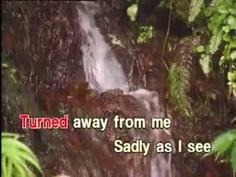 Someone's Always Saying Goodbye - Video Karaoke (Star Records)