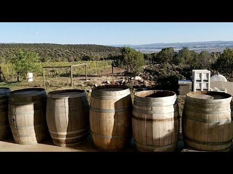 Explore Colorado Hotchkiss Wineries