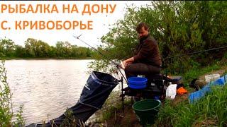 #8 Фидер на Дону в районе с. Кривоборье