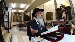 №3 мудрость жизни Рав Йосeф Зальцман уроки торы истина торы и галахи
