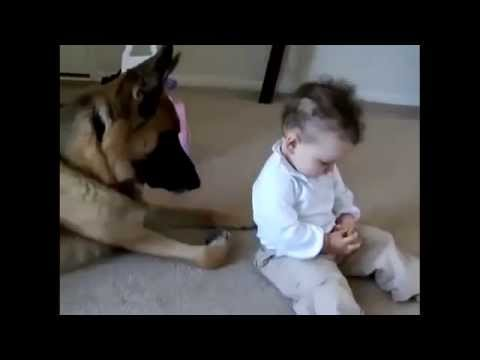 Best Funny Dogs And Children Funny Videos with your kids ... Funny Videos For Kids