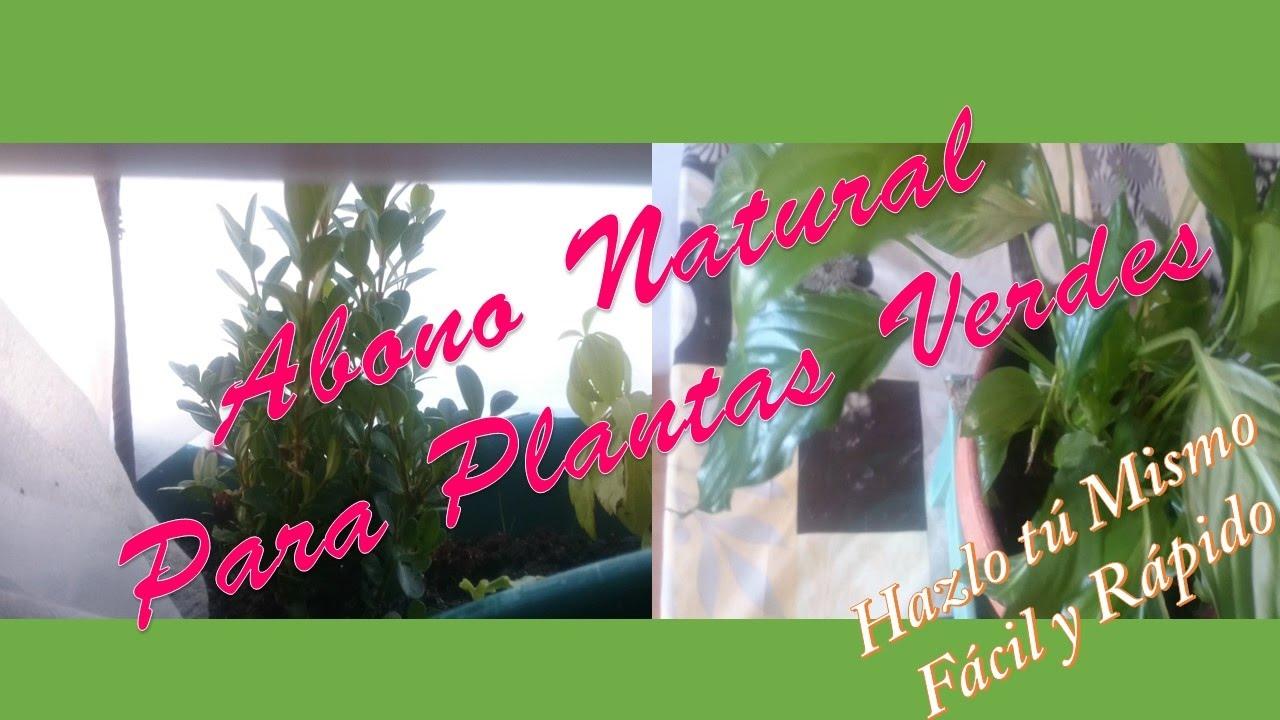 abono natural para plantas verdes