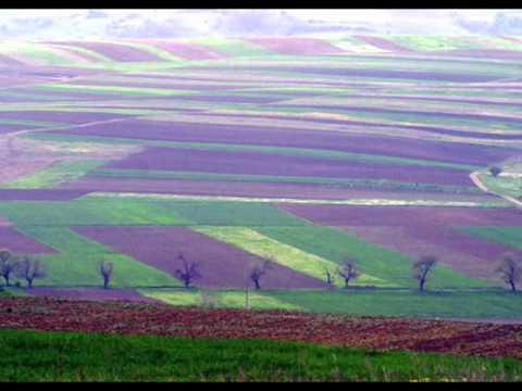 Transilvanian String Quartet - Suita II - Moldova