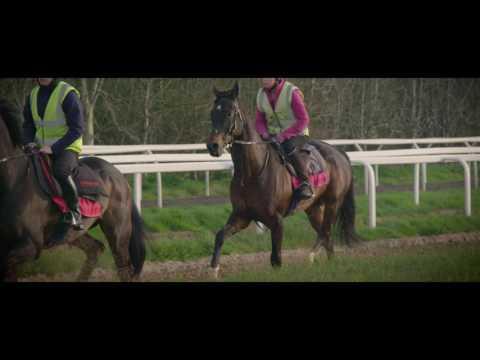 Paul Nicholls Aintree Runners Part 1