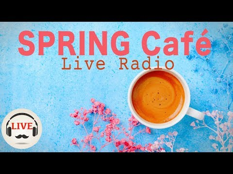 Smooth Beats Music - Chill Out Cafe Beats - 24/7 Live Radio - Music For Sleep, Study