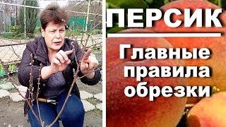 видео Обрезка персика