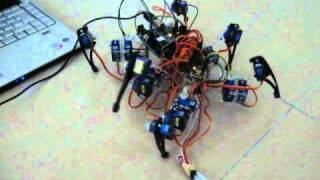Spider Robot using Arduino and Processing...