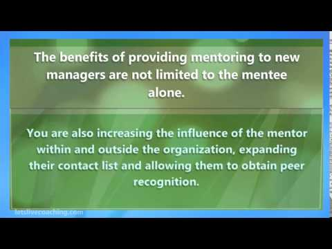 Mentoring Programs for Managers by Professional Business Coaches