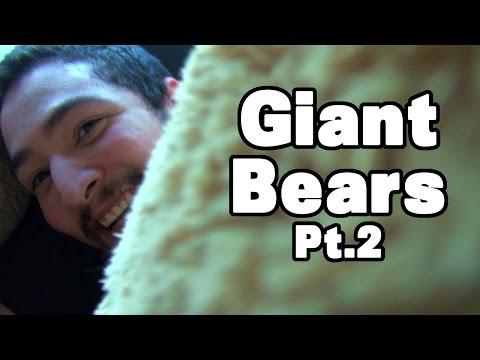 Giant Bears Pt2