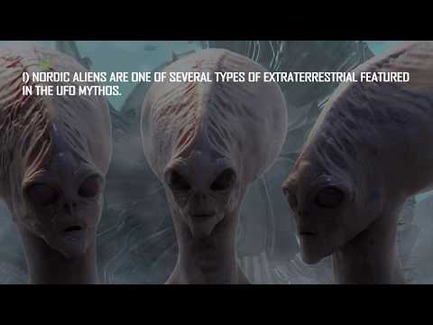 Nordic Aliens | Nordic Body Structure | How do they look like? | UFO Myths