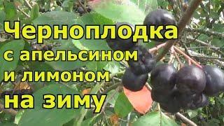 Смотреть видео Варенье черноплодная рябина с лимоном