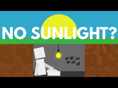 What Would Happen If You Never Saw The Sun?
