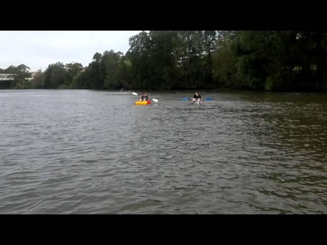 Cool Water Kayak vs Feelfree Move Kayak