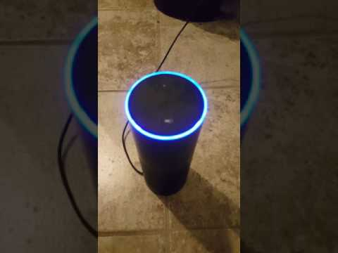 CIA is always listening (Amazon Alexa)