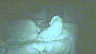 Домовой на Зое 69 в Салехарде.(Видео снято на одну ночь, за 5 часов камера успела уловить странное существо которое возможно и есть