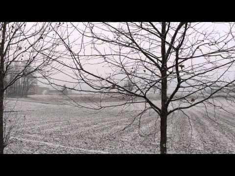 Neve a Vicenza - 12/02/2012 - (2-3) HD