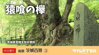茨城県内の素敵な風景映像を「ほぼ週刊」でお届けいたします。 第三回は...
