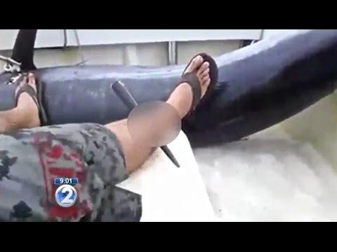 Man Impaled By Marlin in Hawaii