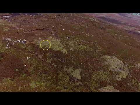 Mum Uses Drones To Find Dogs