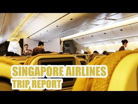 Singapore Airlines Economy Class from Delhi to Singapore | SQ401 Full Flight Report