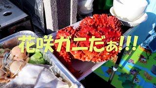 【北海道: オトコのソロキャンプ】花咲ガニと生ホタテで海鮮鍋、カニの甲羅酒やハイボール、赤ワインまで飲んで大丈夫かしら?