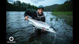 Fly fishing for salmon in Norway, stjördal 2019