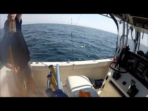 Tuna fishing on kaitlyn marie ocean city md 2013 youtube for Fishing spots in maryland