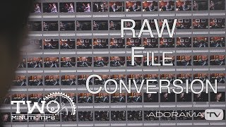 RAW Image Conversion: Two Minute Tips with David Bergman