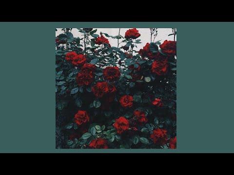 ZAYN, Sia - Dusk Till Dawn | Slowed Down