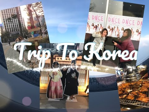 CVLOG - Trip To Korea ! - DNCE concert with Regina Idol and Universal Music Indo ! (ENGLISH SUBS)