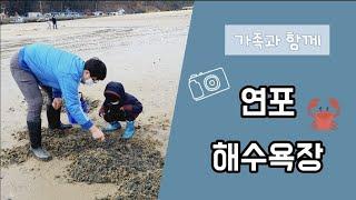 6살 일상_연포해수욕장으로 가요_가족여행_1박 2일