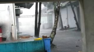 Hujan extream tasikmalaya Awal 2017 (03-01-2017)