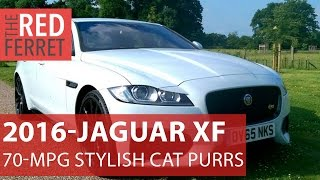 2016 Jaguar XF - Super 70 MPG Economy And Bags Of Style Too. This Cat Purrs! [Review]