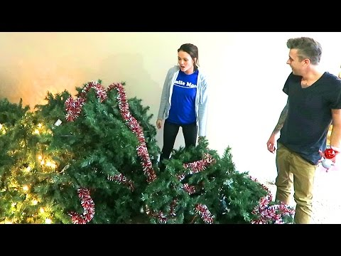 Thumbnail: DESTROYED THE CHRISTMAS TREE!!