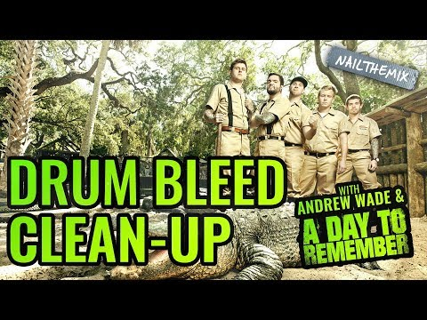 How To Mix Pop-Punk Drums: Drum Bleed Clean Up [ w/ Andrew Wade + A Day To Remember ]