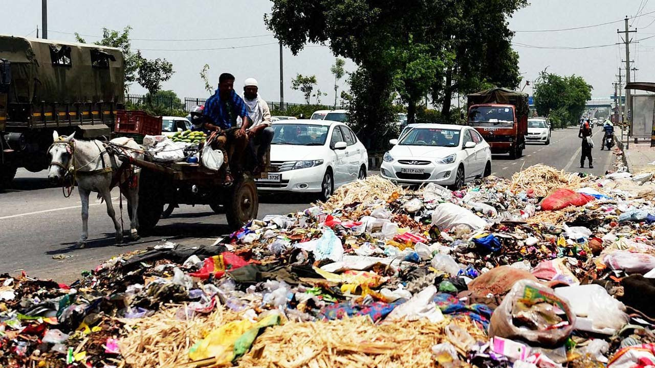 Image result for throw garbage in the dustbin