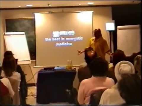 Bill Nelson Presentación Madrid Quantum Universe Europe & 5-elements - 2004