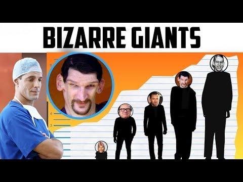 World's Tallest Man hits Ten Foot Tall?