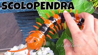 Mainan Lipan - Innovation Giant Scolopendra Creepy Crawlers Toys