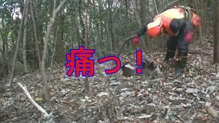 【狩猟season2】☆罠師の宿命☆珍客