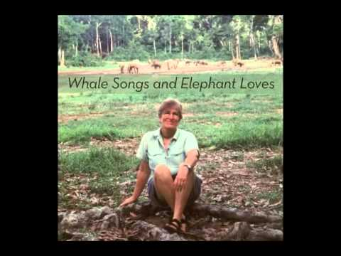 Katy Payne on Whale Songs and Elephant Loves