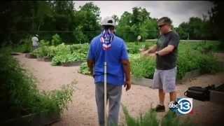 The Executive Gardener Story - ABC News Houston